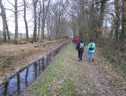 Randonnée l'étang et la rigole du Boulet 17 février