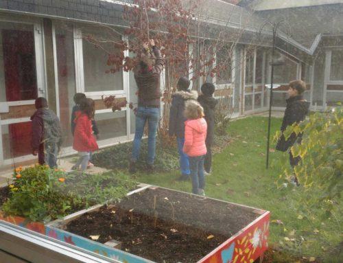 On continue l'aménagement du patio…