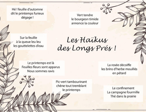 Petit challenge «Les Haïkus des Longs Prés»